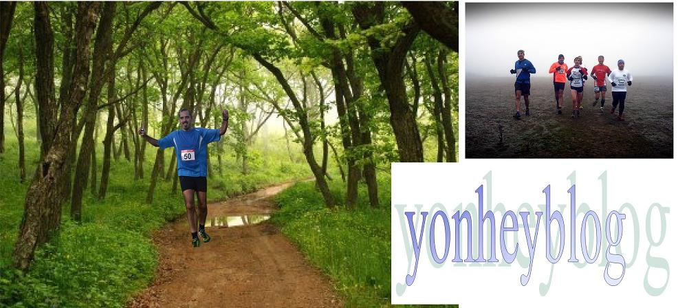 yonheyblog