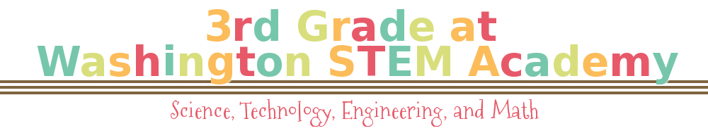3rd grade at Washington STEM Academy