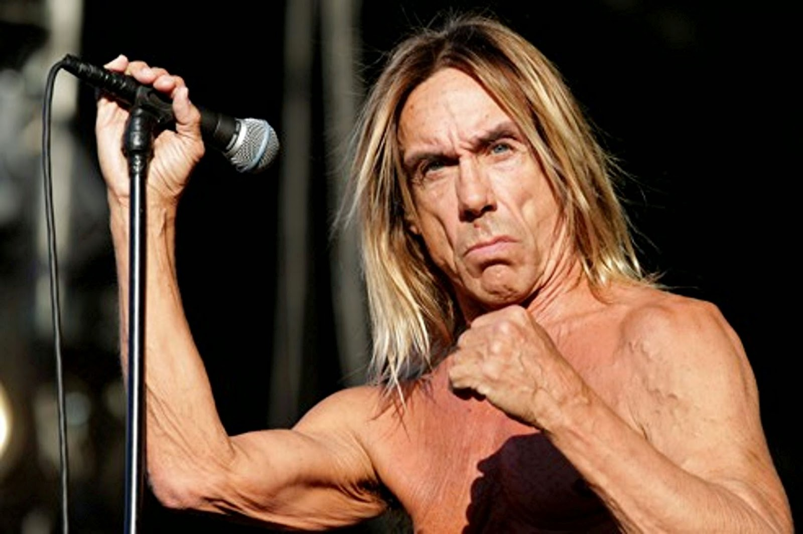 Iggy Pop, Amnesty International