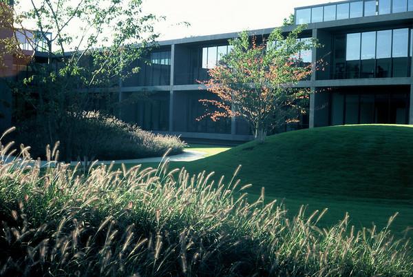 Pensando jardines jardines para la inspiraci n campus de for Estanque reflectante