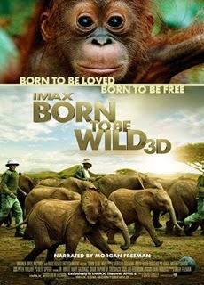 ντοκιμαντέρ HD με ζώα