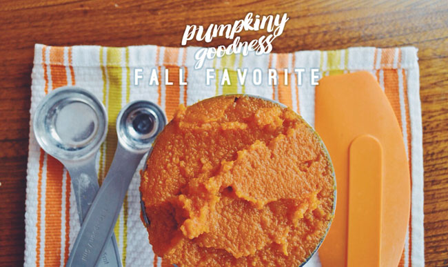 Fall recipe - pumpkin muffins