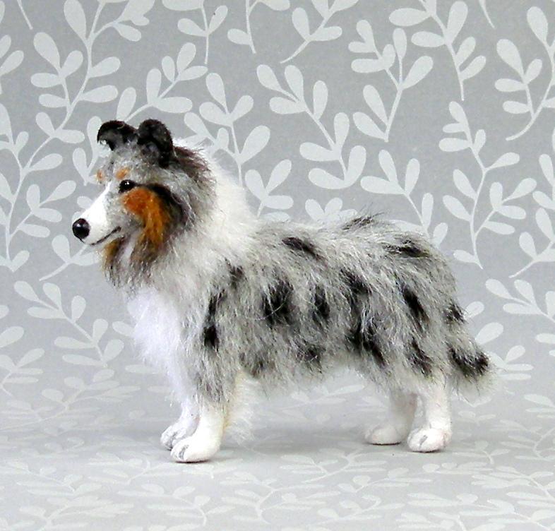 Miniature Shetland Sheepdog | Dog Breeds Picture
