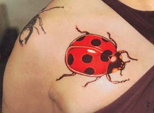 Significados de Tatuagens de Joaninha