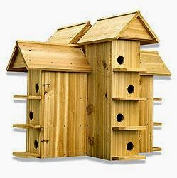The Birds The Bees Choosing the Right Housing for your Purple