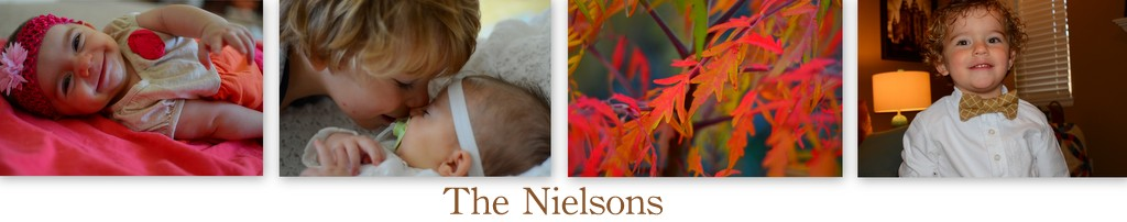 The Nielsons