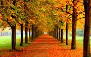 Labels: Paisajes, Paisajes de Otoño, Paisajes Naturales hojas de otono