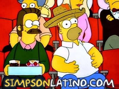 Los Simpson 5x16