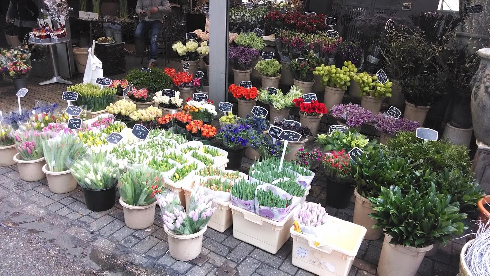 Амстердам+тюльпаны