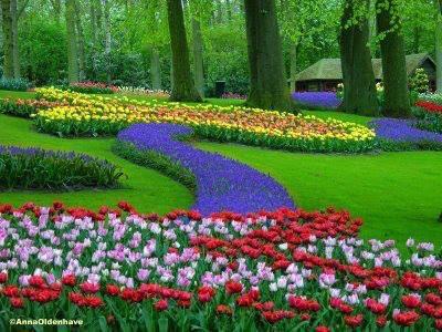 Encuentros con tu propia sabidur a el jard n m gico de for El jardin magico