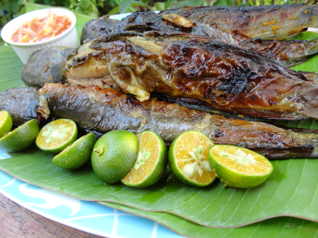 ... Bakar dengan Air Asam Mangga-Grilled Catfish with Mango Sour Gravy