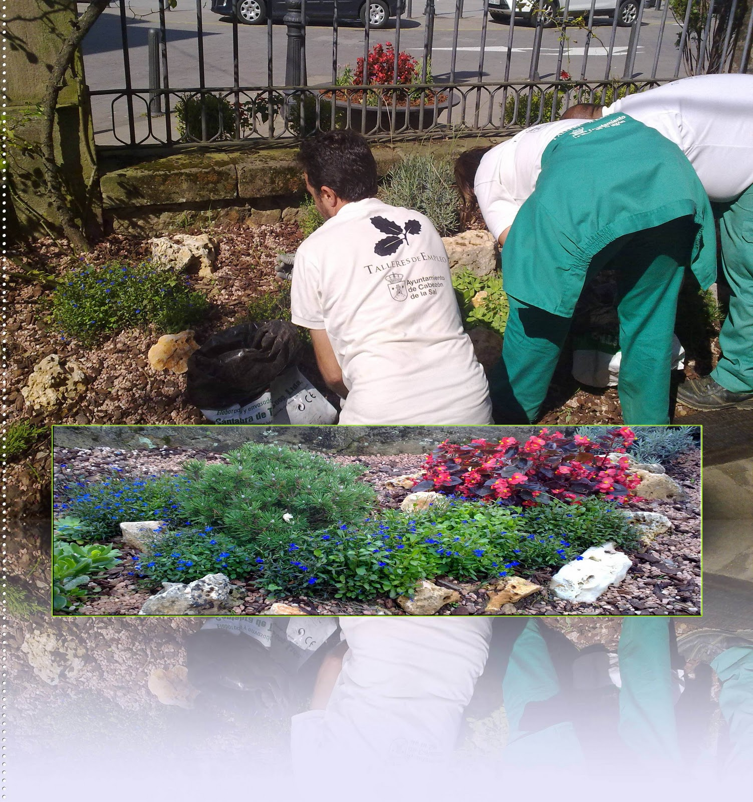 Taller de empleo cabez n de la sal mantenimiento de la for Trabajo de mantenimiento de jardines