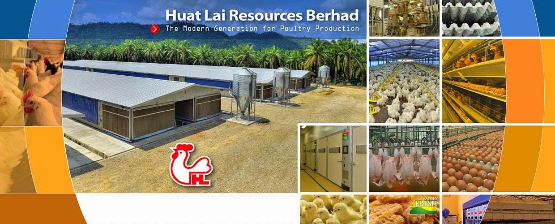 Lowongan, Kerja, Keluar, Negeri, Malaysia, Peternakan, Ayam