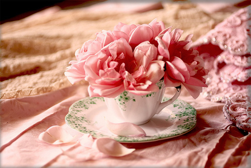 Madame Soufflé smells like Vintage, tastes like Soufflé: A Cup ...