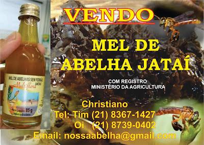 Mel de abelhas Jatai (Tetragonisca angustula)