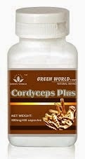 Produk Cordyceps Plus Capsule