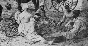 Güney Karolina'da Kölelik