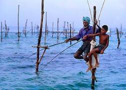 スリランカのフィッシング