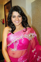 Tashu Kaushik transparent saree navel still - 4