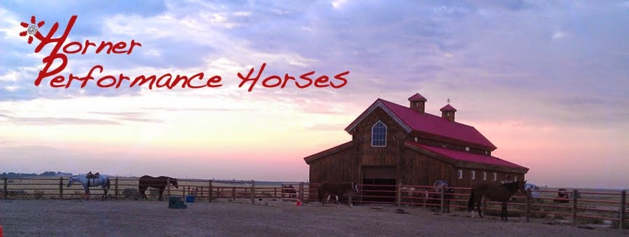 Horner Performance Horses