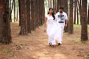 Teeyani Kalavo Movie Photos-thumbnail-11