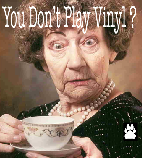 YOU DON'T PLAY VINYL?