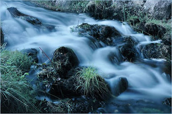No empujes el río