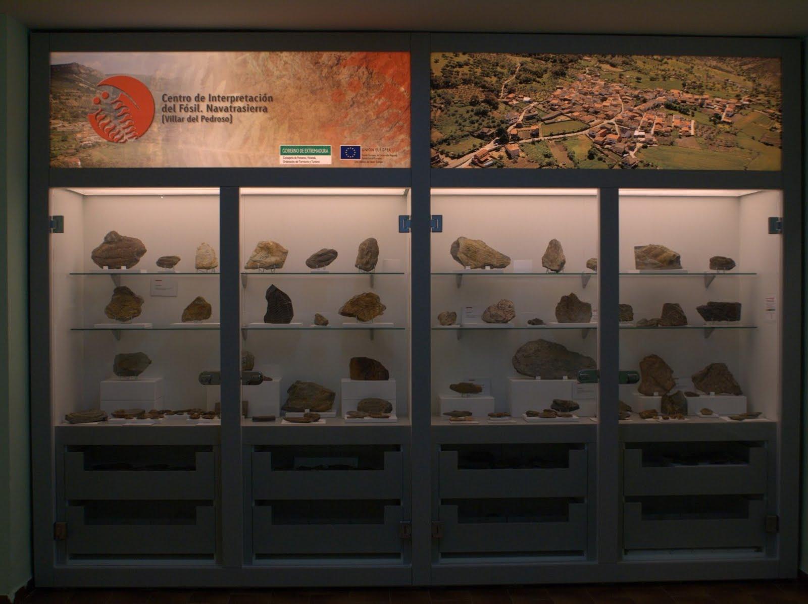 Centro de Interpretación de los fósiles de Navatrasierra