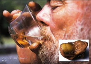 Nauseantes bebidas do mundo