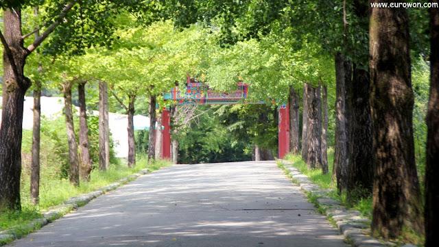 Camino de subida hacia el templo Buseoksa
