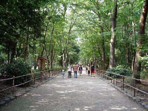 京都市左京区|下鴨神社 歩射神事