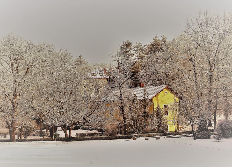 Iarna la USAMV
