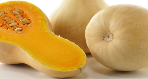 winter superfood - squash