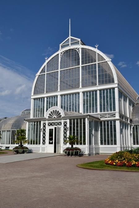 palm house. gothenburg, palmhuset göteborg, garden roses, rosor göteborg,