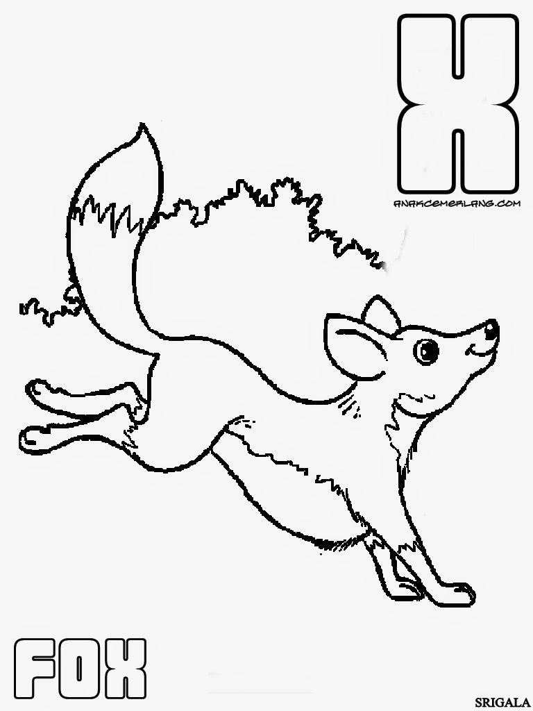 Nama Hewan Dalam Bahasa Inggris Dari Huruf X