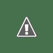 Doki y sus amigos