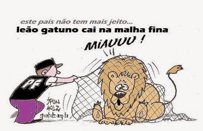 Leão gatuno