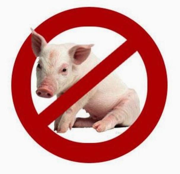 Alasan Ilmiah Mengapa Daging Babi dan Anjing Diharamkan