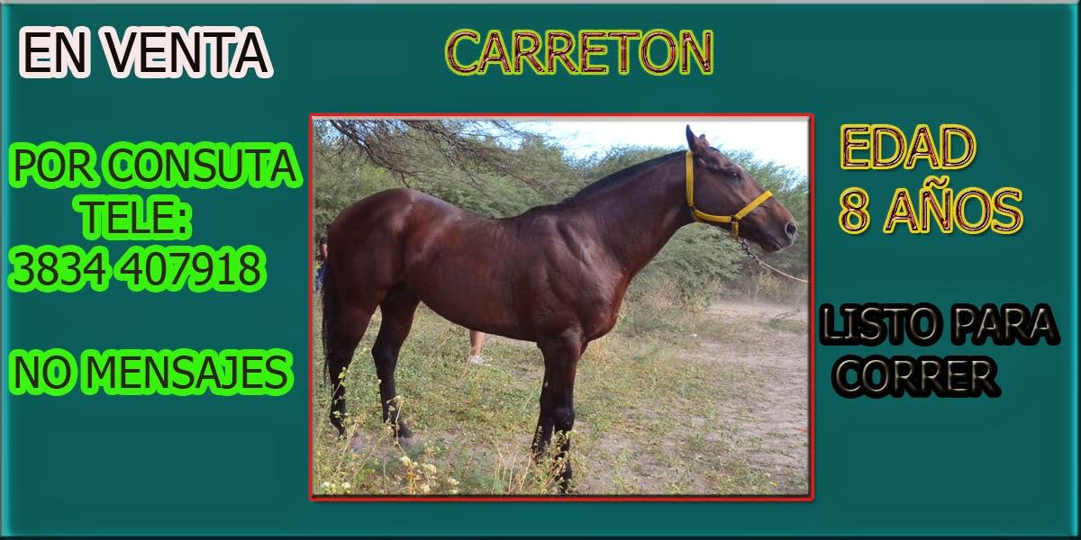 EN VENTA CARRETON