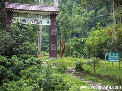 Taman Nasional Gunung Leuser di Aceh dan Sekitarnya