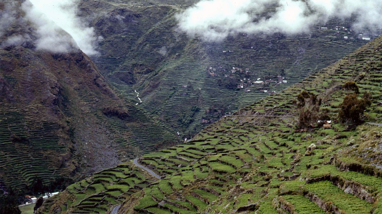 Machu picchu peru hd wallpapers high definition for Terracing definition in agriculture