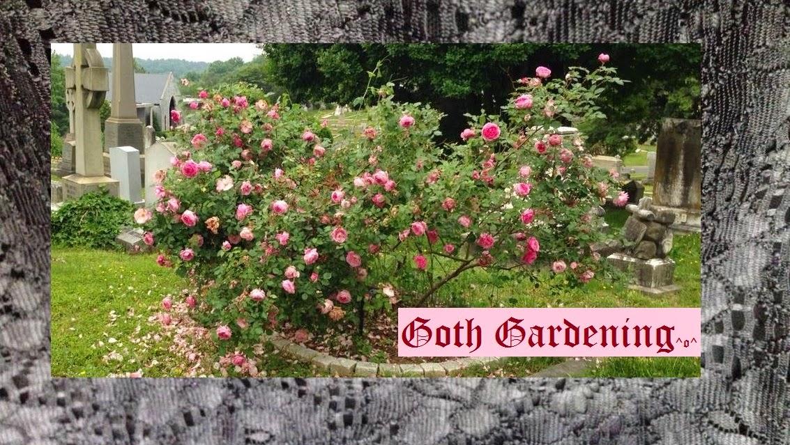 Goth Gardening ^o^