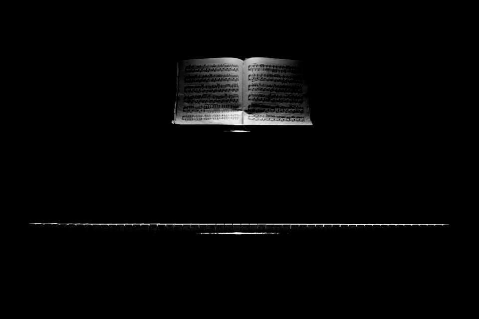 """Poema: Pellaiga, de Damsi Figueroa. Libro de Referencia: Carlos Morales, """"Un rostro en el jardín"""", Col. Cuadernos del Mediterráneo, El Toro de Barro, Tarancón de Cuenca 2000"""
