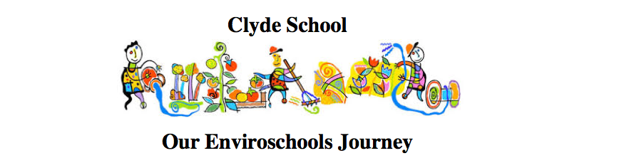 Clyde Enviroschools Journey