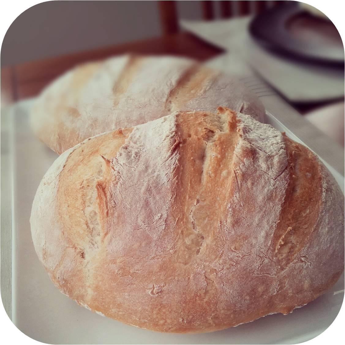 The Gregarious Glutton: Crusty Artisan Bread