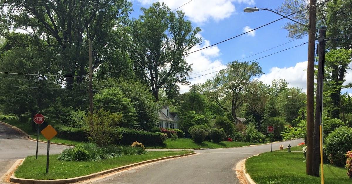 Around The Corners : Cherry Tree & Lexington