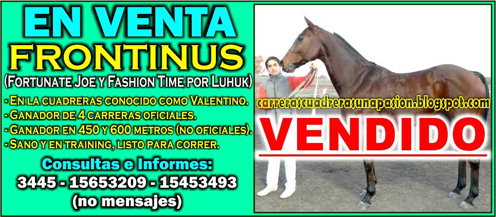 VALENTINO - VENTA - 28.07.2015