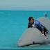 """وقف عرض حلقة آثار الحكيم في """"رامز قرش البحر"""" وتعويضها مليون جنيه.. واستمرار عرض البرنامج"""