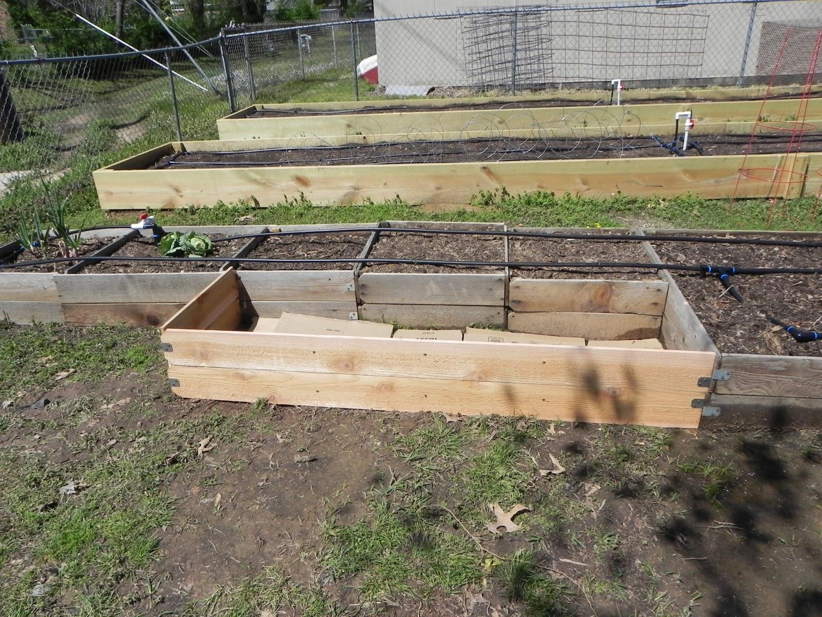 reaganite71 39 s blog cheap easy raised bed garden addition. Black Bedroom Furniture Sets. Home Design Ideas