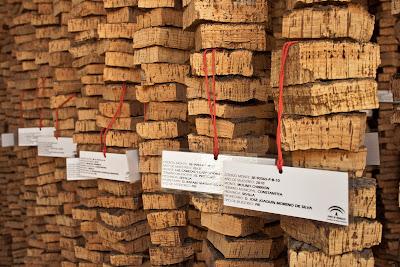Ristras de muestras etiquetadas